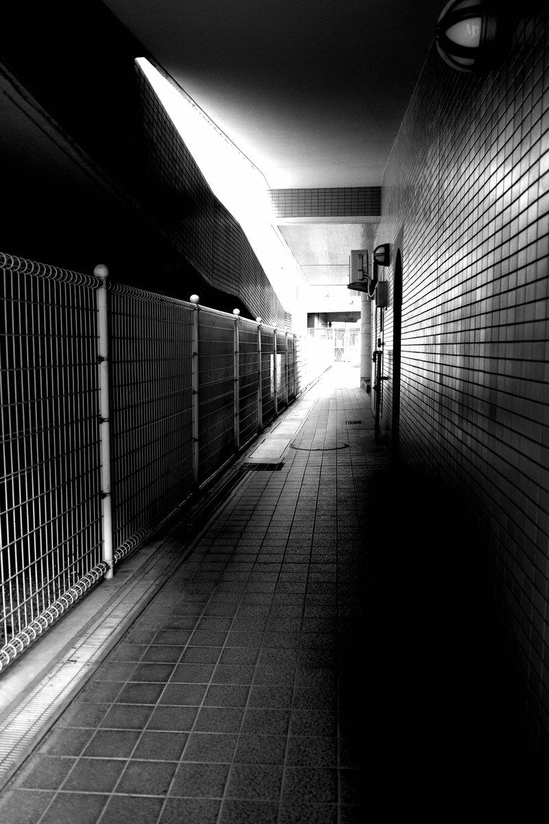 On my way home . #GR3 #橙のモノクロ写真 #monochrome pic.twitter.com/wgNMIfsQGU