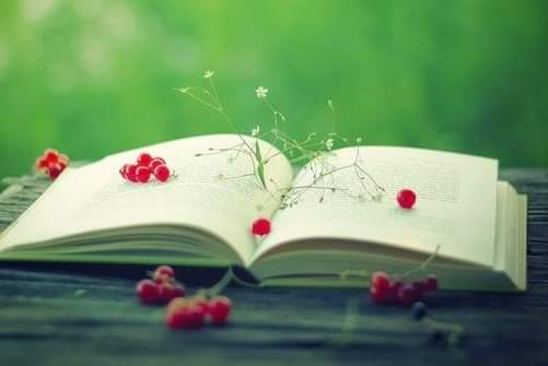 """Günaydın. """"Ne kadar okursan, o kadar çok bilirsin. Ne kadar çok öğrenirsen, o kadar çok yere gideceksin."""" —Dr. Seuss  #gunaydin  #anlamlısözler #kitap  #evdekal #books  #booklove #readpic.twitter.com/W8KypRENgv"""