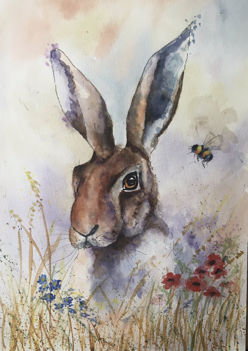 'Hare with Bee' watercolour. #hare #watercolor #watercolour #wildlife #wildlifepainting #artistsontwitter pic.twitter.com/oSPaIzoD0s
