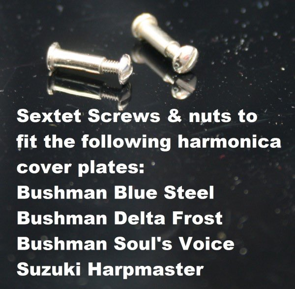 Bushman Delta Frost Sextet Cover Plate Screws - Bag of 6;  These also fit the Hohner Special 20, and Suzuki Manji @RWHarmonicas #YAMAHA #harmonica #sextet #NEW  #music #Amazon #ShopLocal #echofirst #bushman #suzuki #Engineering #StayInWorkOut #Thankful #ad