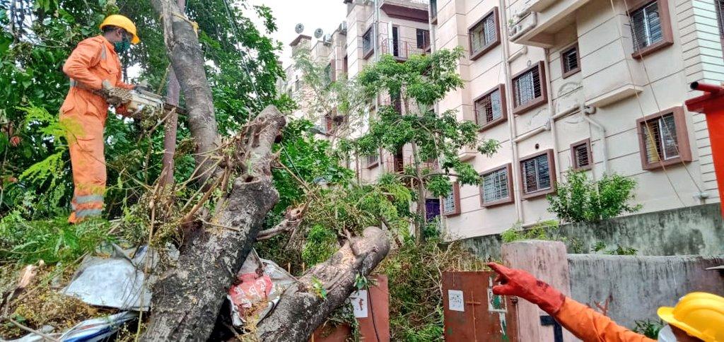 #CycloneAmphan Updates 26/5/20- 𝐃𝐀𝐘6-#PostAmphanRestoration NDRF @ Restoration Work at RC Pal Lane Ward No 59, Kolkata, West Bengal #NDRF4U #Committed2Serve @satyaprad1 @ndmaindia @PMOIndia @HMOIndia @PIBHomeAffairs @BhallaAjay26 @DDNewslive @ANI @airnewsalerts @PTI_News