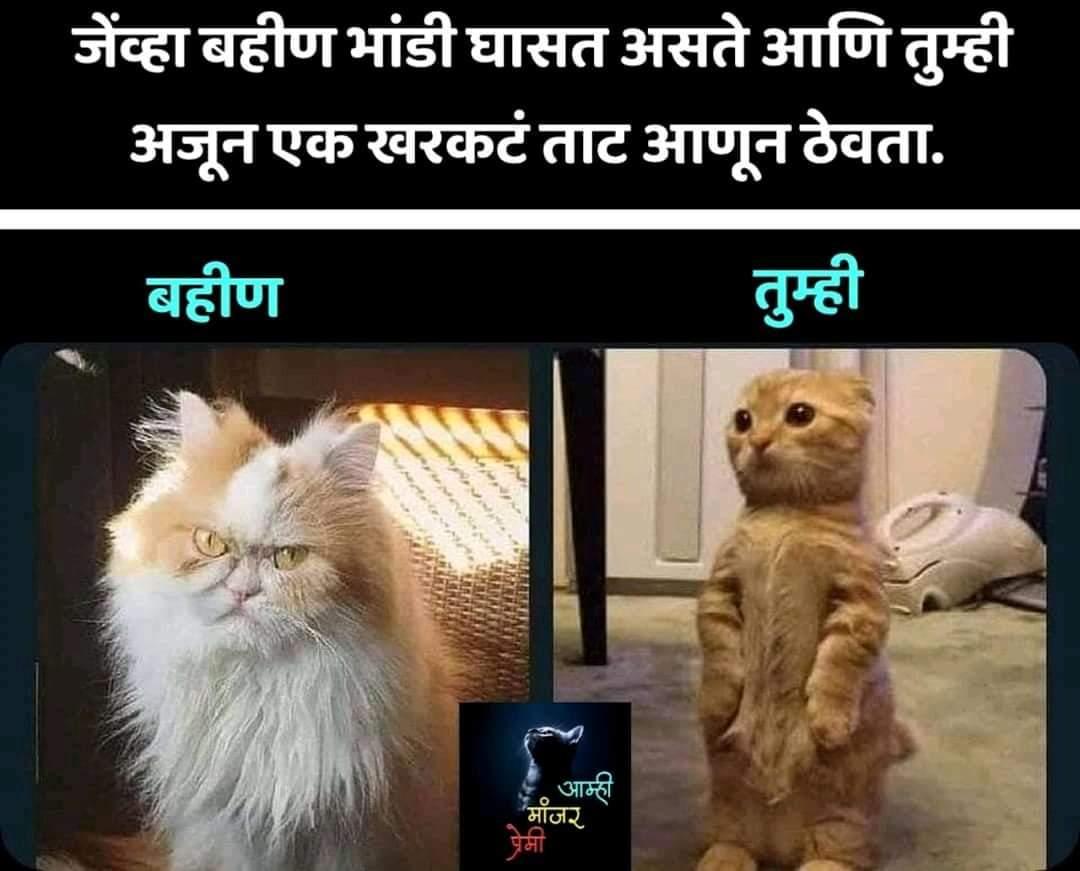 #marathi_twitter #marathimeme #marathipostpic.twitter.com/kxRzQdARdu
