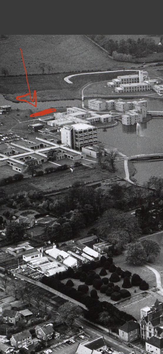 @UoYAlumni @UoYArchaeology @UniOfYork Nope. Goodricke C Block (as was) was not there, then... And Micklegate House is off the picture...
