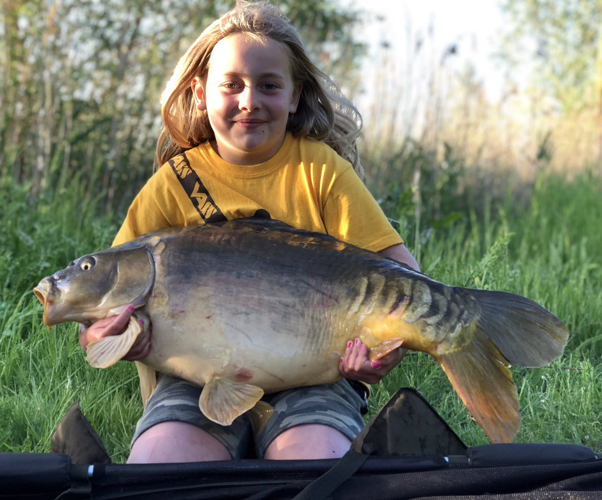 Loving being back on the bank. Sophie caught this lovely old 24lb Mirror  #fishing #Vass #carp pic.twitter.com/f3MMRvu2jq