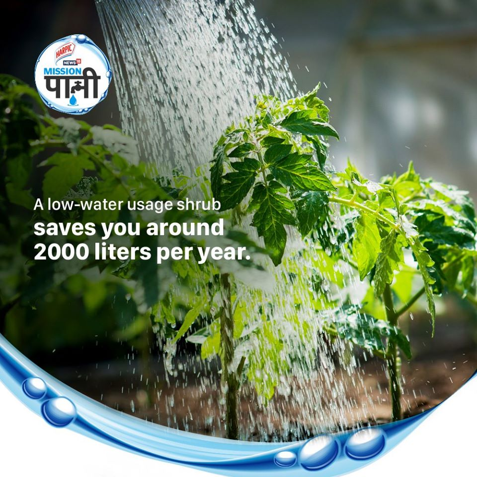 Plants and greenery can be our best allies, if we know how to best make use of them. Know more on how you can help by joining Harpic India-News18 #MissionPaani initiative. Log on to  #JalShakti4JanShakti #IndiaJalBachao @CNNnews18 @MissionPaani