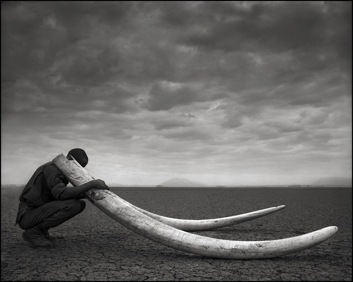 "#Photography Nick Brandt, Kenya. A Ranger with tusks from a killed elephant. From his ""On This Earth A Shadow Falls Across the Ravaged Land"". pic.twitter.com/GawKm5Qe4E"