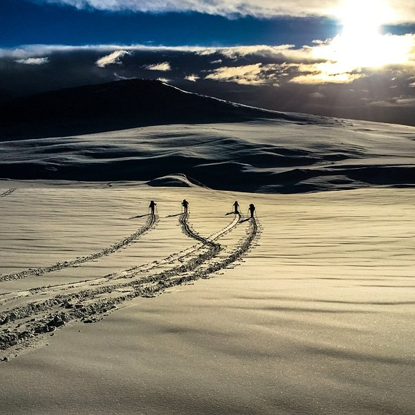 Yearning to swap overcrowded pistes for the tranquility and adventure of hut to hut ski touring? This adventure will give you the skills you need! Bookings now open for next winter. #traveltuesday #Norway naturetravels.co.uk/ski-touring-no…