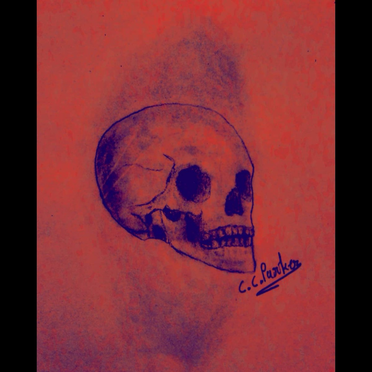 ON THE INSIDE WE'RE ALL THE SAME.#pencilartwork #skull #skullart #skulldrawing #skullartwork #pencilsketches #pencildrawings #pencilart #pencilsketch #graphiteportrait #graphitesketch #illustration #illustrationart #charcoalart #charcoalportrait #illustrationartists #happie99pic.twitter.com/Qlnarsa5xq