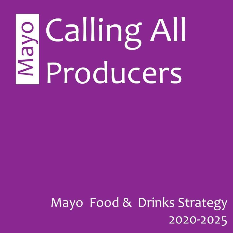 Working with us on the Mayo Food & Drinks Strategy 2020-2025.     gentle reminder to check your emails.   There's still time to be added to our producers database.    Email oonagh@alphaomega.ie to find out more #Mayo pic.twitter.com/ZtuoNKlpSt