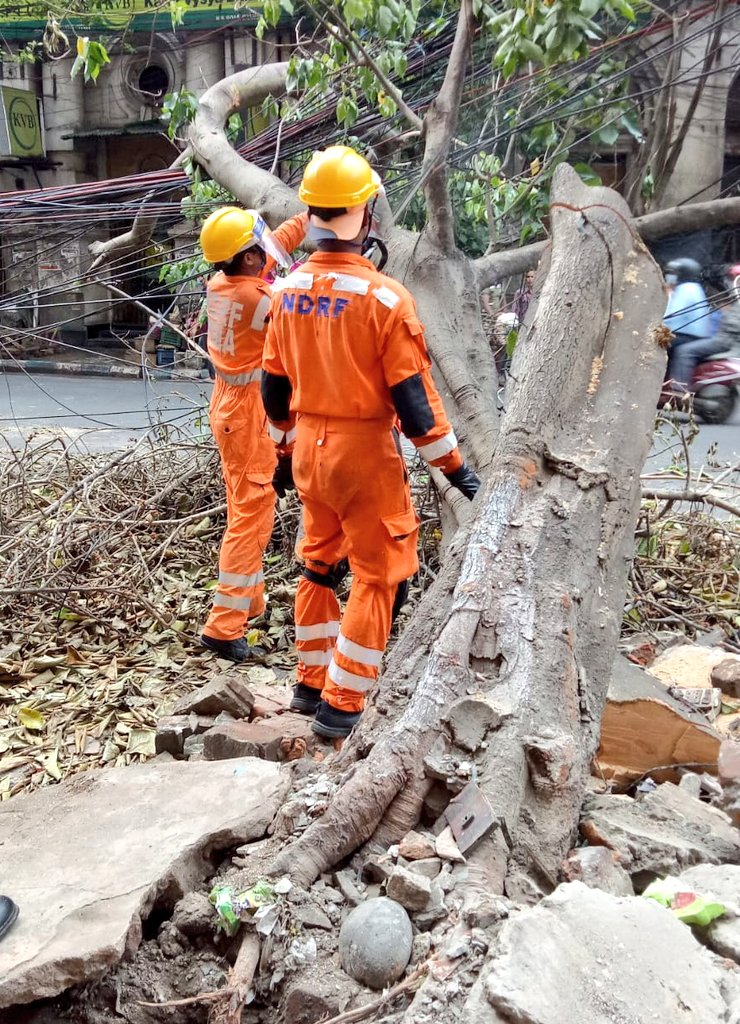#CycloneAmphan Updates 26/5/20- 𝐃𝐀𝐘6-#PostAmphanRestoration NDRF @ Restoration Work at Dalhousie Area, Kolkata, West Bengal #NDRF4U #Committed2Serve @satyaprad1 @ndmaindia @PMOIndia @HMOIndia @PIBHomeAffairs @BhallaAjay26 @DDNewslive @ANI @airnewsalerts @PTI_News