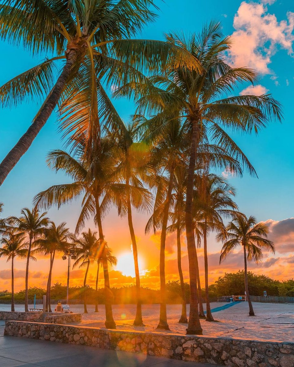 GoodrisingHappy Tuesday@305offerup #MiamiBeach #ReOpenAmerica #natureloverspic.twitter.com/kcbKVScmTY