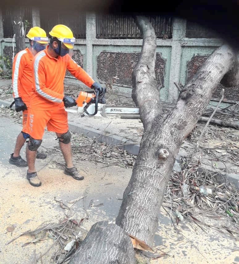 #CycloneAmphan Updates 26/5/20- 𝐃𝐀𝐘6-#PostAmphanRestoration NDRF @ Restoration Work at Kasba Rajbang, Kolkata, West Bengal #NDRF4U #Committed2Serve @satyaprad1 @ndmaindia @PMOIndia @HMOIndia @PIBHomeAffairs @BhallaAjay26 @DDNewslive @ANI @airnewsalerts @PTI_News