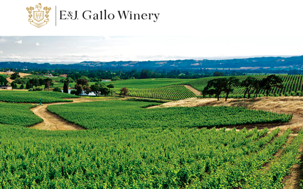UM Harvests Gallo, Named Iconic Winery's Media AOR: IPG Mediabrands' UM unit has been named the media agency of record for E&J Gallo Winery, the world's largest family-owned winery... https://t.co/Fqnn1wMhqx @mp_joemandese https://t.co/1eC5J3jnLV