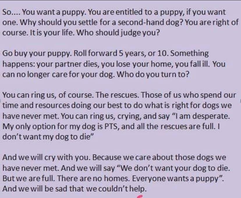 So sad and so true. jlptrustanimalrescue.org.uk