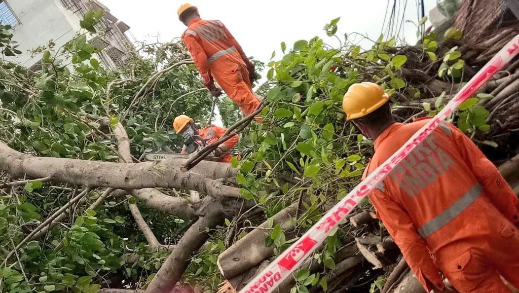 #CycloneAmphan Updates 26/5/20- 𝐃𝐀𝐘6-#PostAmphanRestoration NDRF @ Restoration Work at 14 A Mahendra Roy Lane, Kolkata, West Bengal #NDRF4U #Committed2Serve @satyaprad1 @ndmaindia @PMOIndia @HMOIndia @PIBHomeAffairs @BhallaAjay26 @DDNewslive @ANI @airnewsalerts @PTI_News
