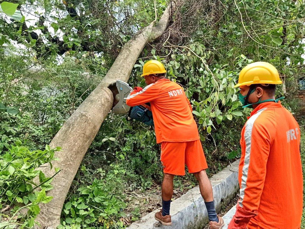 #CycloneAmphan Updates 26/5/20- 𝐃𝐀𝐘6-#PostAmphanRestoration NDRF @ Restoration Work at Hasnabad, North 24 Parganas, West Bengal #NDRF4U #Committed2Serve @satyaprad1 @ndmaindia @PMOIndia @HMOIndia @PIBHomeAffairs @BhallaAjay26 @DDNewslive @ANI @airnewsalerts @PTI_News