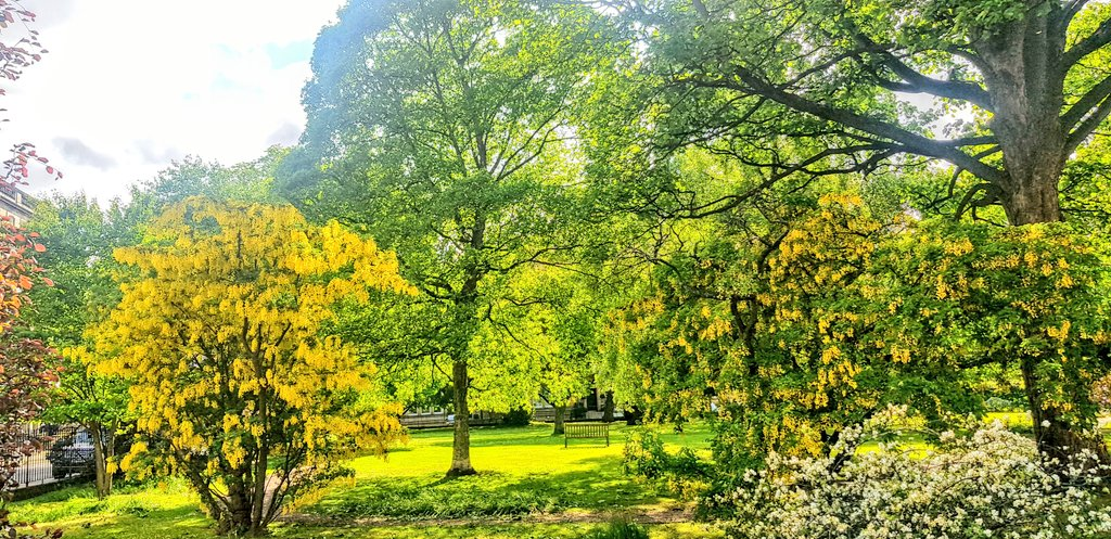 Cycling past some lovely gardens in Edinburgh #Scotland #Local #TuesdayThoughts #gardens #city #colour #spring #beauty #greenpic.twitter.com/2tlsmt2rst
