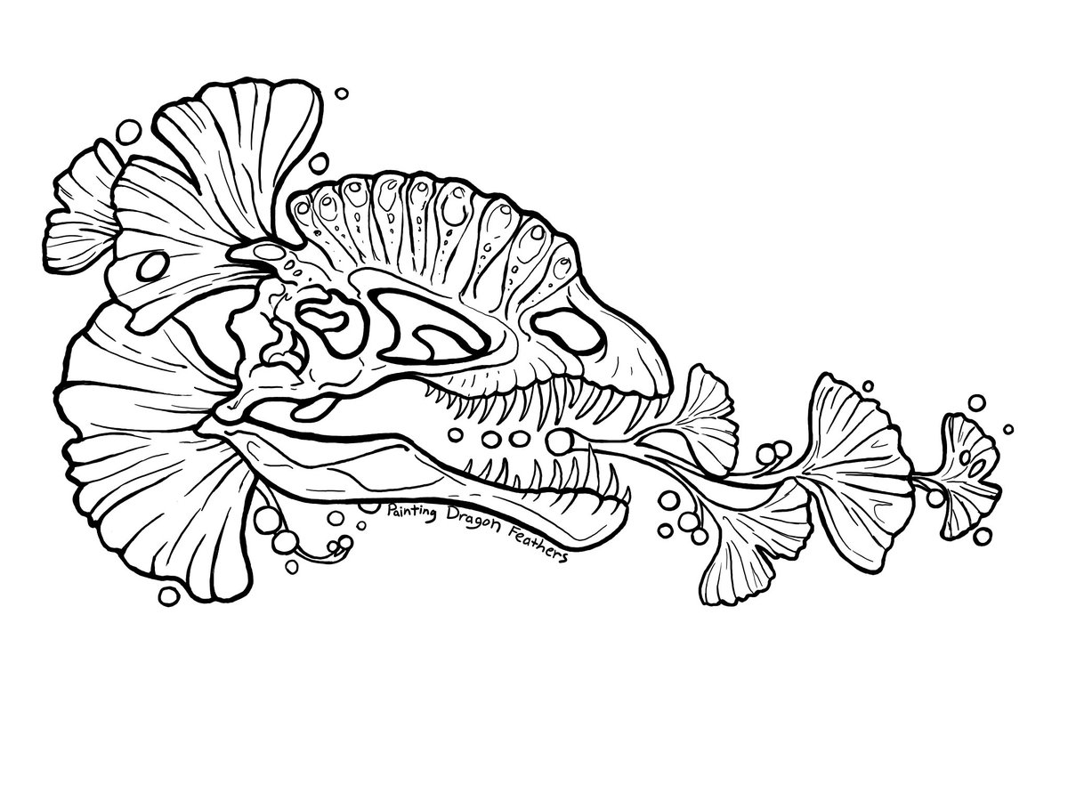 These #coloringpages are for free PERSONAL use. You can support the artist at the Painting Dragon Feathers online shop (info in bio). And if you post your colored renditions online, please tag #paintingdragonfeathers #coloring #lineart #fossil #art #dilophosaurus #dinosaur #skullpic.twitter.com/vhoXA6Ds8U