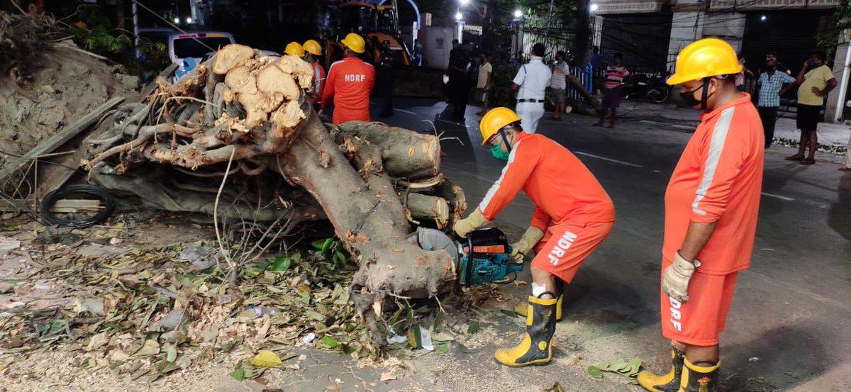 #PostAmphanRestoration # NDRF Restoration work at Kolkata Area Under Supervision of @ NISHITH UPADHYAY @COMDT@ 2 BN NDRF@ #WestBengal @ndmaindia @NDRFHQ @satyaprad1 @PIBKolkata @ZeeBanglaTv @DDNational @DDBanglaNews @News18Bengali @airnews_kolkata