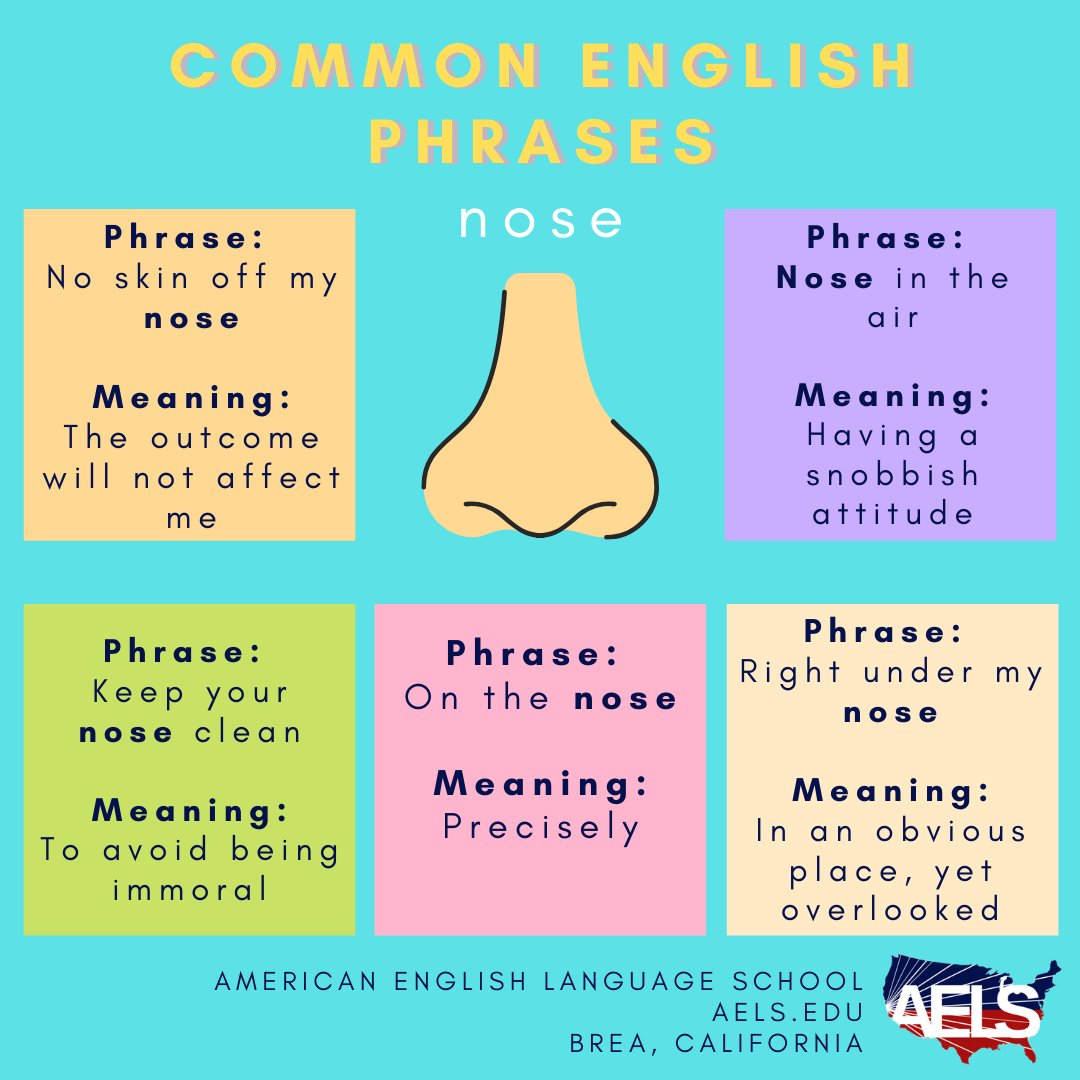 "We hope everybody ""nose"" these common English phrases using noses! Try using one in a sentence!  #nose #englishphrases #commonphrases #idioms #learnenglish #learnenglishonline #ESL #ESLschool #ESLclass #ESLcourse #practiceenglish #englishpractice #englishlanguageschool #ESLlessonpic.twitter.com/YyZJJRx2jV"