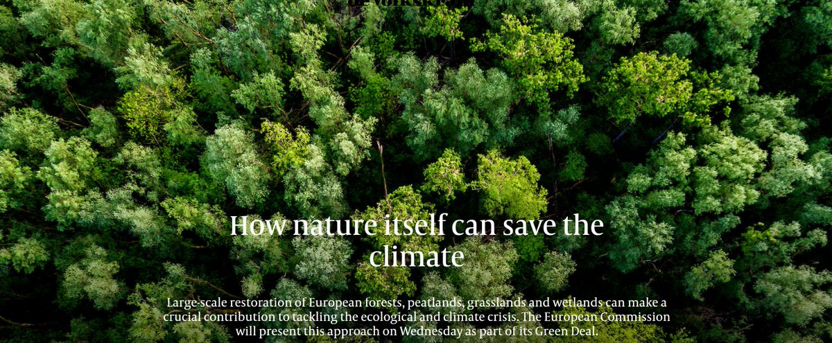 Great article from @volkskrant on tackling climate change through nature recovery, featuring ELP-funded projects in Danube, Polesia, Portugal, Cairngorms & Carpathia: https://t.co/W5meK2nwiK  Read more about ELP projects & the organisations leading them: https://t.co/oHXap0en1M https://t.co/zHm2S0MkWj