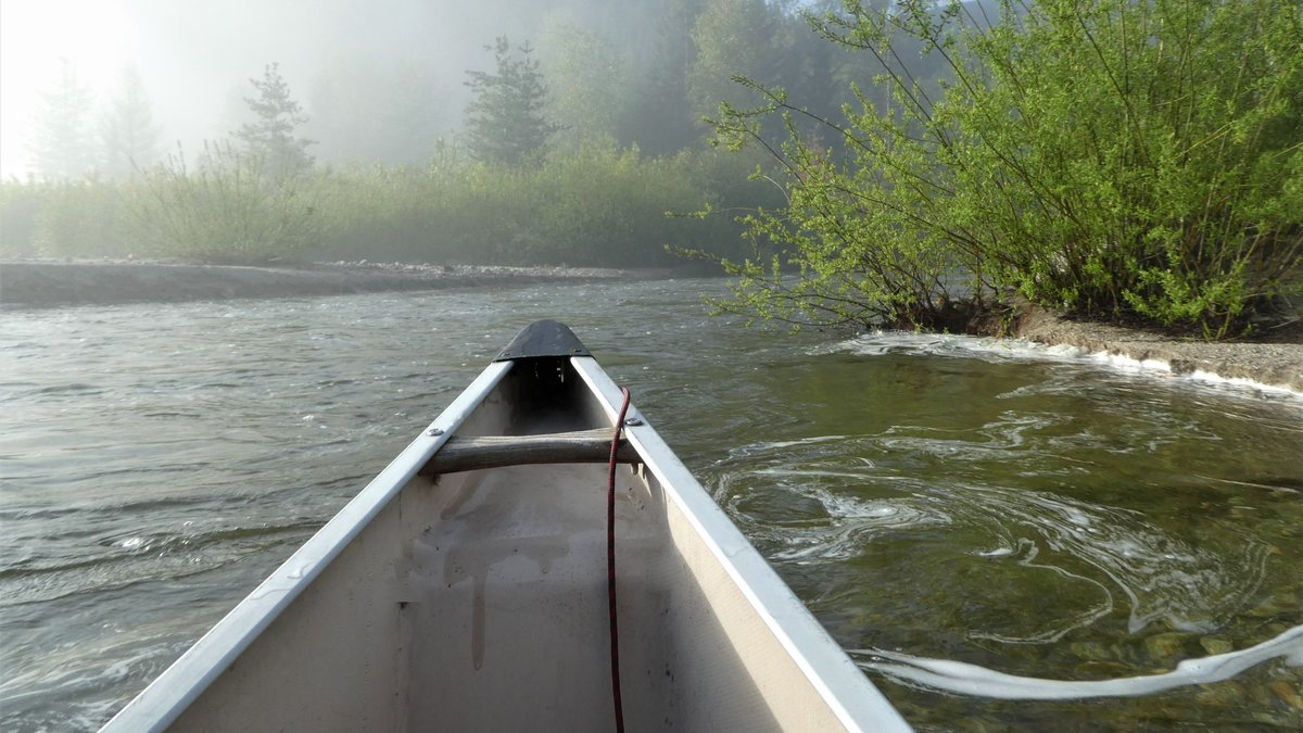 Where Laska Creek empties into Kootenay Lake. #spring #water #canoeing #BritishColumbia #canadapic.twitter.com/CkimegJNIu