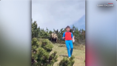 An Italian family's mountain hike took a hair-raising turn after a brown bear followed a child down a mountain path during a day out https://t.co/ErWYQCzazW https://t.co/K1jWwp4Rry
