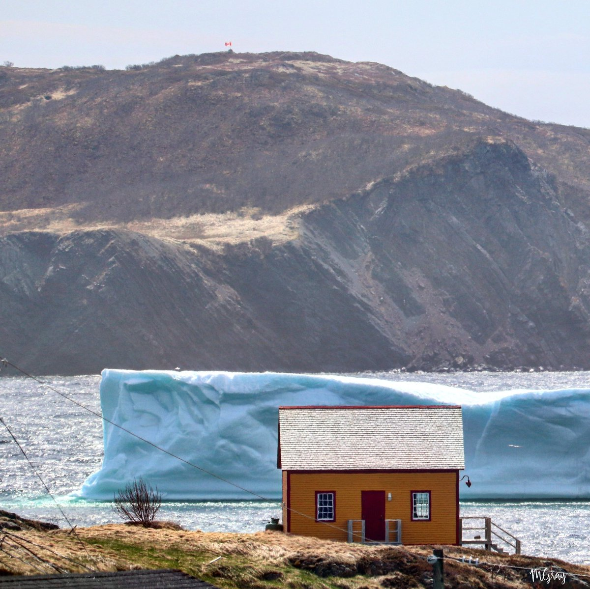 The Canadian Flag  is flying high atop Fox Island while the iceberg lies quite still in the Port Rexton area.  (Click open for full view) #nlwx #ShareYourWeather #explorenl #Canada pic.twitter.com/5aNfWJnx7D