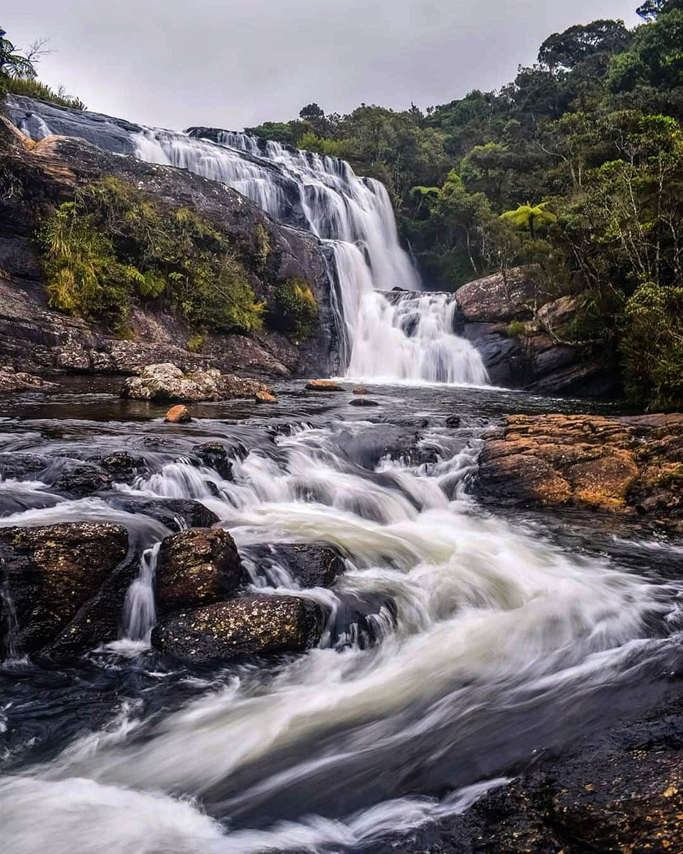 Baker's Falls - Horton Plains National Park, SriLanka  https://www.attractionsinsrilanka.com/travel-directory/bakers-falls/ …  Photo credit : th3maniac   #nature #waterfall #photograghy #Travel #NaturePhotographypic.twitter.com/eAKBhL6A17