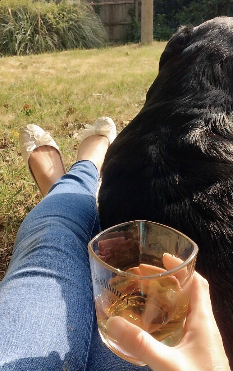 Hope you're all having a nice evening. Cheers @JackDanielsUK #sunshine #puppycuddles perfect pic.twitter.com/1VVGVttADk