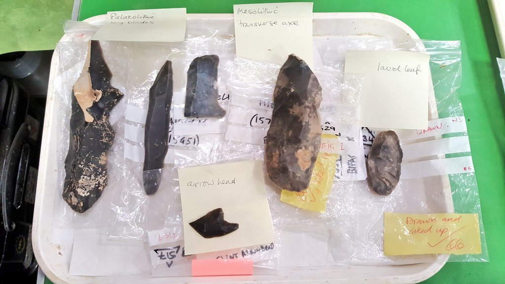 A very small selection of worked flint tools, discovered in the past 25 years of development at the Wellcome Genome Campus in Cambridgeshire, displayed in the @WGCengage Hidden Lives exhibition. I loved curating this show & exploring the long history of our site #MuseumsUnlocked https://t.co/PHpiWpWR2l
