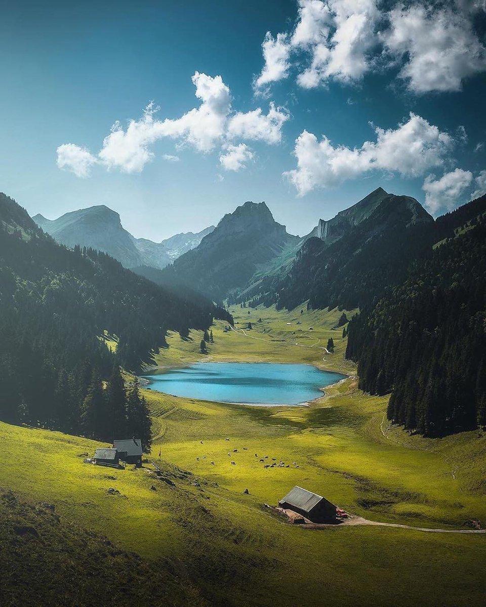 Swiss countryside    Photos by @cumacevikphoto   #NaturePhotography #nature #Travel #photo #beauty #Switzerlandpic.twitter.com/a14LvwnQcU