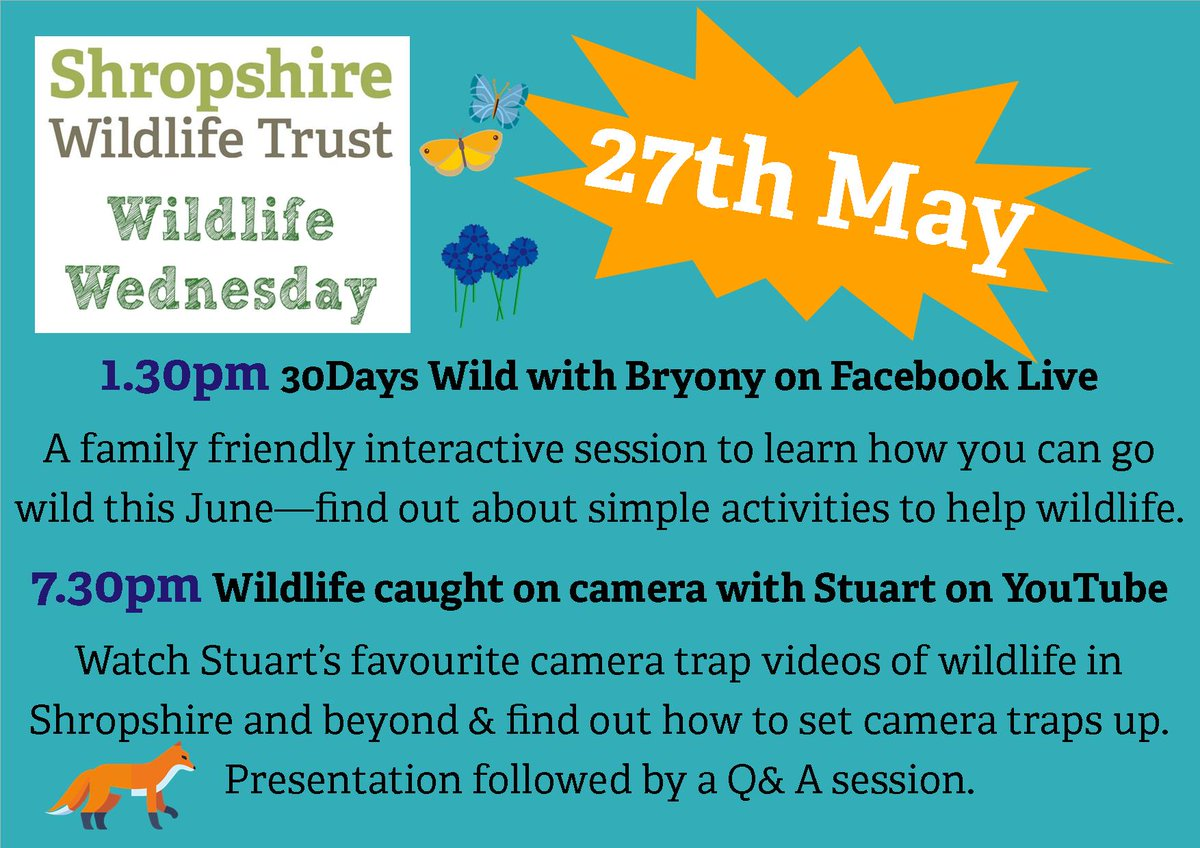 Join us tomorrow for #WildlifeWednesday:  - 1.30pm on Facebook, 30 Days Wild! Find out how to go wild this June, with our simple activities.  - At 7.30pm on You Tube, Stu @PinemartensUK will be talking about camera trapping: https://www.youtube.com/channel/UCFNZuW3Fd8mNa-sUGsWJQdw …pic.twitter.com/lEDU3IuvIa