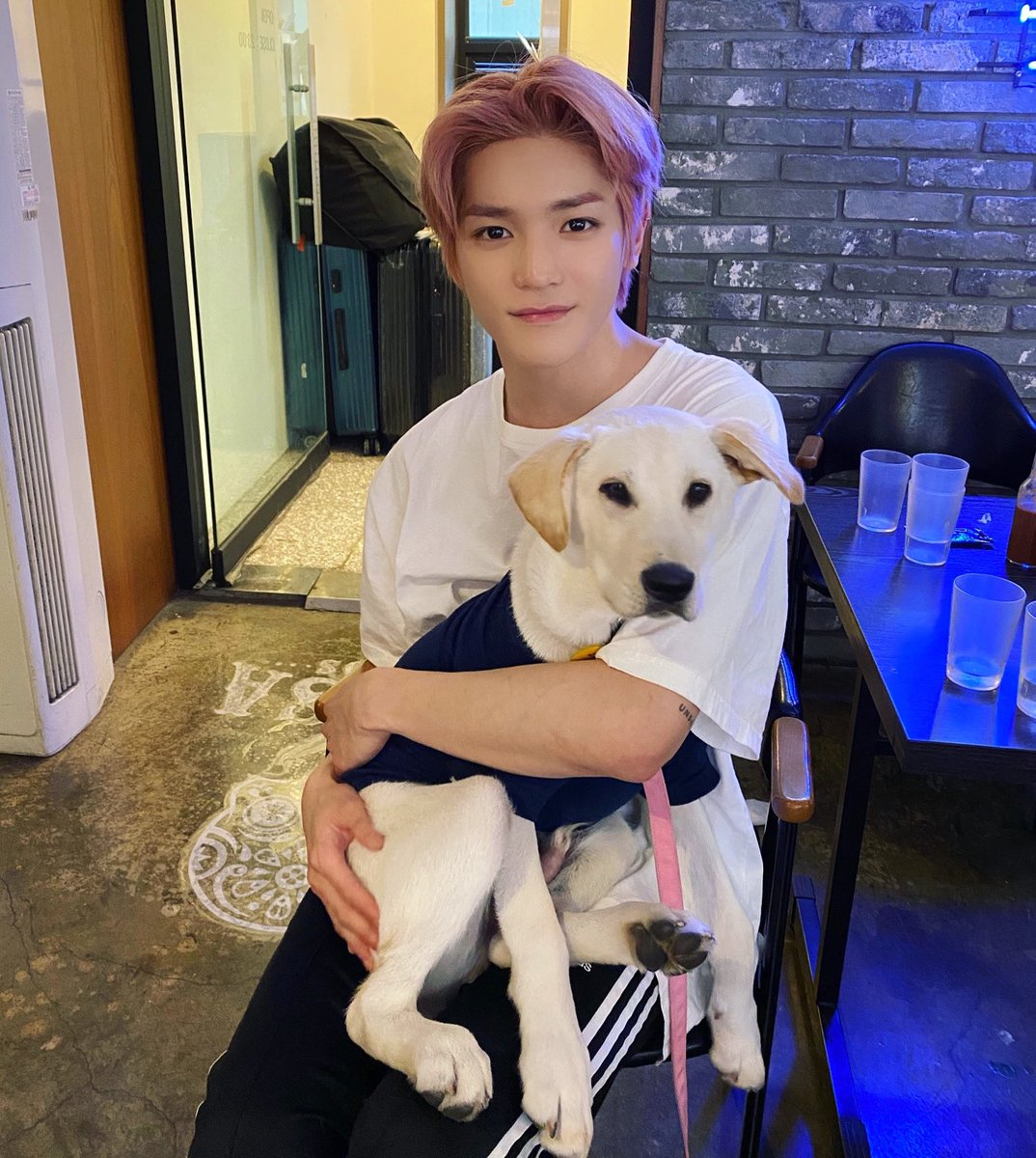 The leader of NCT127 with the new Pupnae (puppy maknae) of NCT127 💕🌹🐕💕 instagram.com/p/CANDUAIg4x_/…