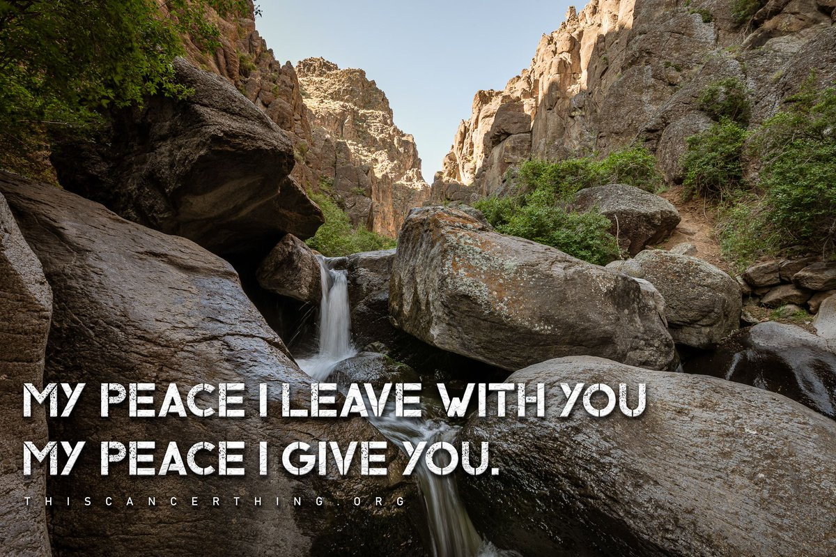 Peace to you today.pic.twitter.com/rwIOnUjqLl