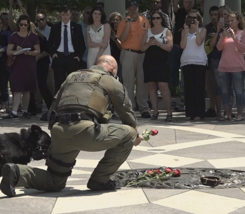 Today is Peace Officers Memorial Day lets honor all of those #heroes who have made the ultimate sacrifice  #K9 #BlueLivesMatter #ThinBlueLine #PeaceOfficersMemorialDay <br>http://pic.twitter.com/NoY2XAYETk
