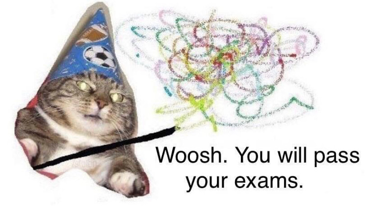 Good luck with final exams, @MITstudents. The cat wizard is with you.