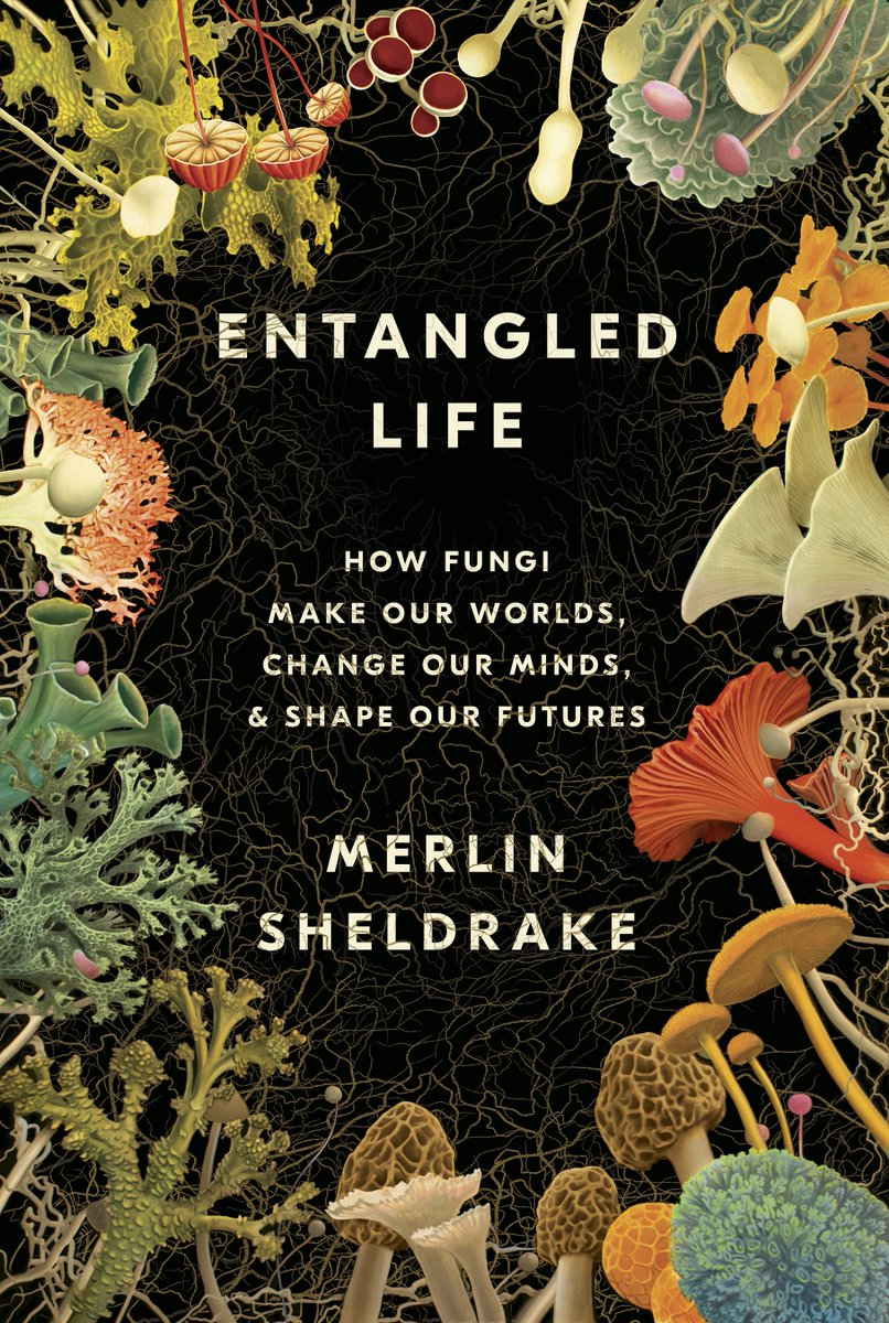 This is going to be so damn good: Merlin Sheldrake & Helen Macdonald in conversation about 'Entangled Life'. Brought to you by @PointReyesBooks, with support from our pals @emergence_zine.