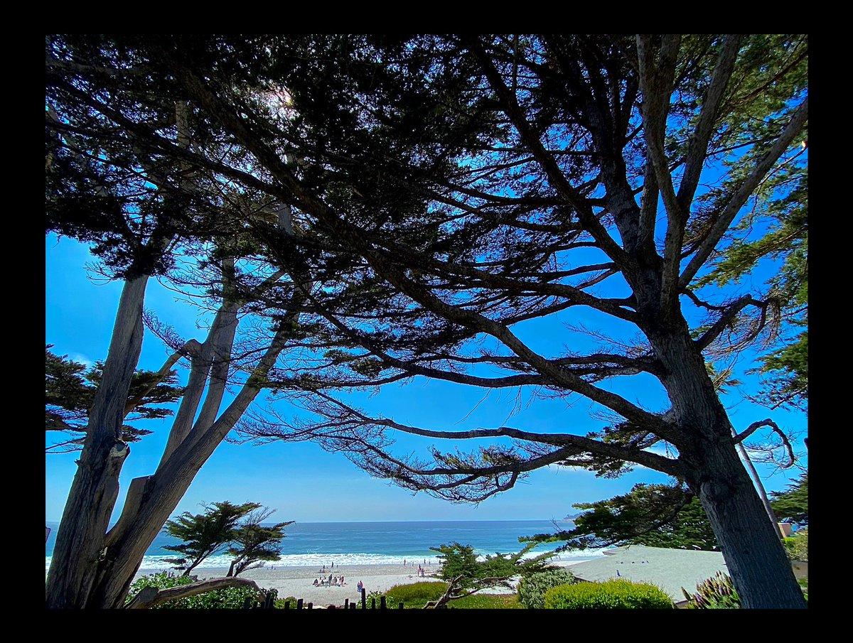 Carmel-by-the-Sea  is #pictureperfect     by me   #naturephotography #beach #oceanphotography #oceanview #oceantherapy #nature #naturelovers #californialovepic.twitter.com/w2M4lssHLm