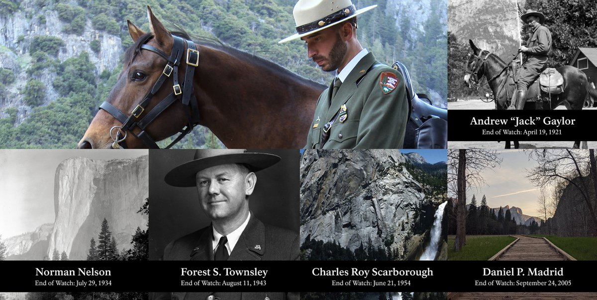 In honor of #NationalPoliceWeek and #PeaceOfficersMemorialDay we want to acknowledge the service and sacrifice of fallen law enforcement officers. Today we remember the Yosemite law enforcement rangers who have died in the line of duty. <br>http://pic.twitter.com/Wh44rRadBS
