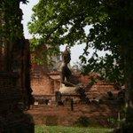Image for the Tweet beginning: #virtualtour #virtualthailand #ayutthaya #watmahatat #Buddha