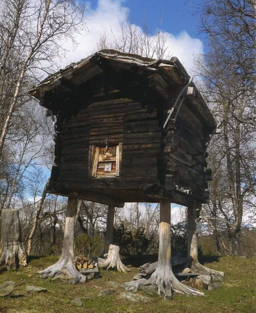 Baba Yaga's house in Hattfjelldal municipality, Nordland, Norway. https://t.co/FUa5JclqCu