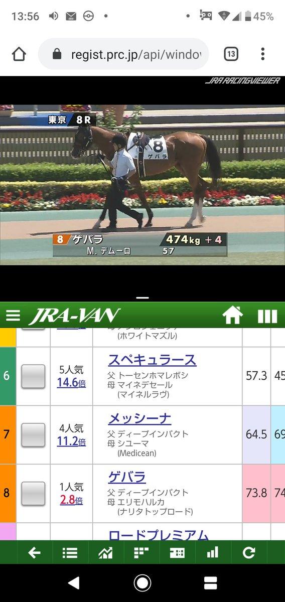 Web グリーン チャンネル 中央競馬全レース中継/中央競馬パドック中継