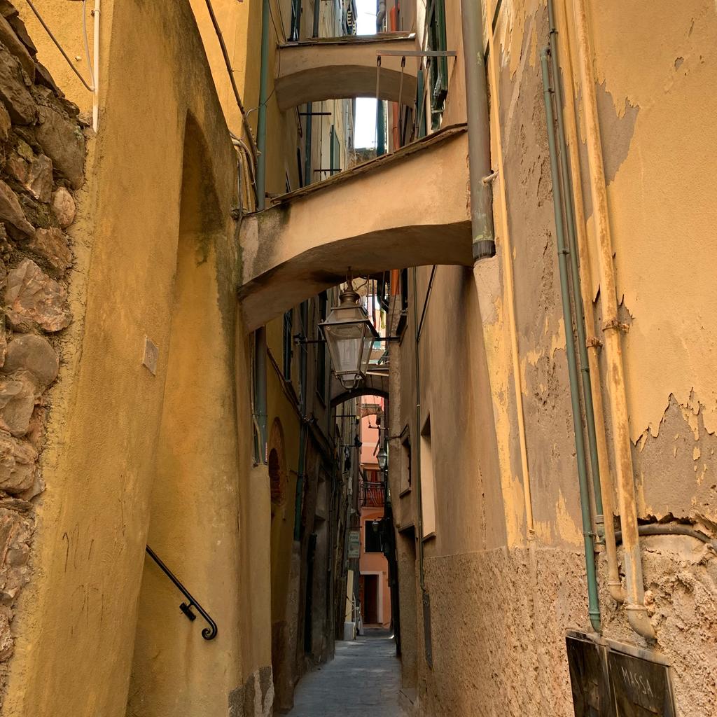 Beautiful street   #liguria #ig_italia #volgoitalia #cinqueterre #italyphoto #faraglioni #italianlandscape #visititalia #super_italy #cinqueterreitaly #insightmoments #cinqueterrelove #italianroadtrip #viaggiamo #monterosso #lecinqueterre #venicelove #italianrivierapic.twitter.com/lCqdx9XzV0