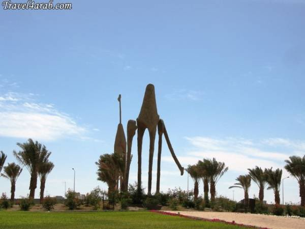 Camel Roundabout دوار الجمال أبحر 13 15
