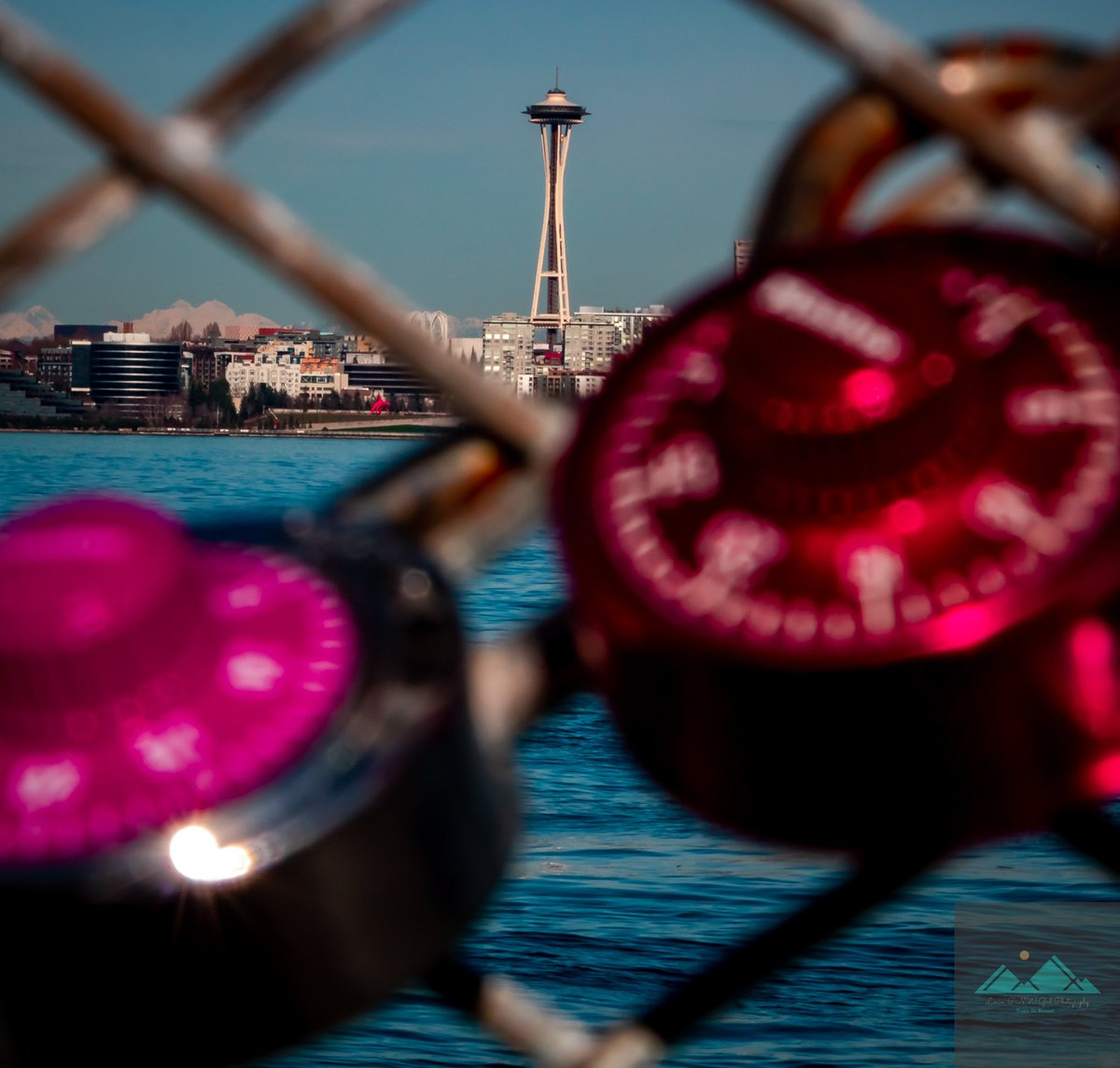 The #PNW has my heart under lock and key   . . . . #washingtonstate #nw #pacificnorthwest #upperleftusa #lockdown2020 #westseattlelife #westseattle #seattle #seattlewashington #canonphotography #canon #canonusa #canonphotographerpic.twitter.com/lxShkREBXo  by Lovin PNW Girl