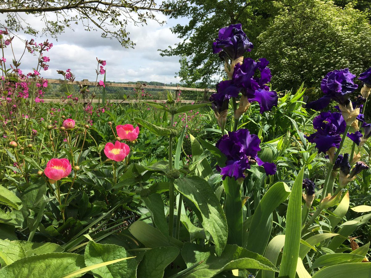 We believe gardening can help your mental health as well as your physical health. We give grants to help people get back into their gardens. Please consider making a donation while we are unable to host our fundraising events #MentalHealthAwarenessWeek  #lockdown #charity pic.twitter.com/JKle0v6Uek