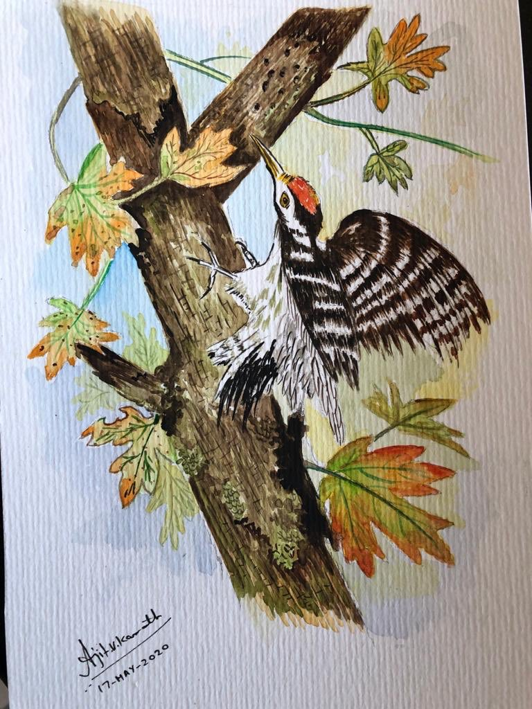 @ParveenKaswan Bird Painting by Ajit Kamath From Paris seems much more beautiful as of now