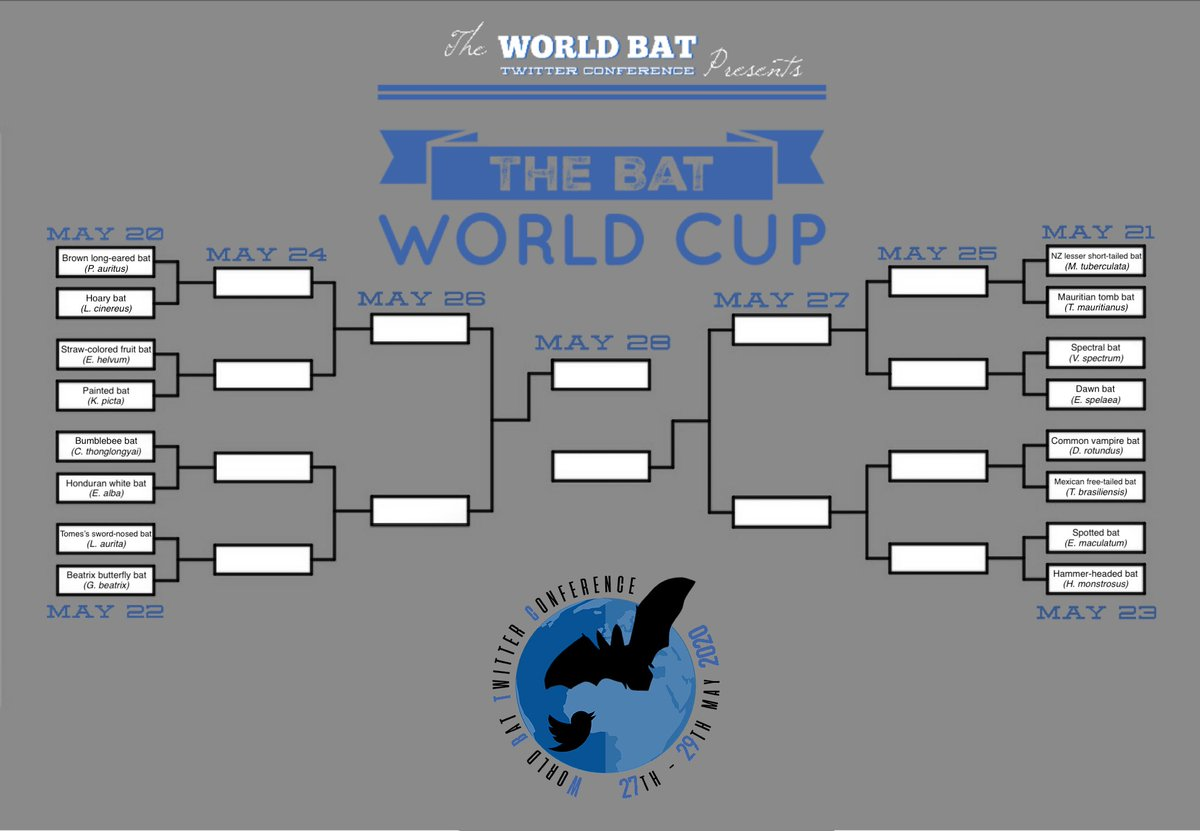 Good morning, Batfolk, & a happy Monday 🦇✨ The World Bat Twitter Conference #WBTC1 is almost upon us, happening from 27th - 29th of May, but, taking us up to it, I have the honor of hosting the first-ever: BAT WORLD CUP #BatWC2020 See below to see how it will work 1/