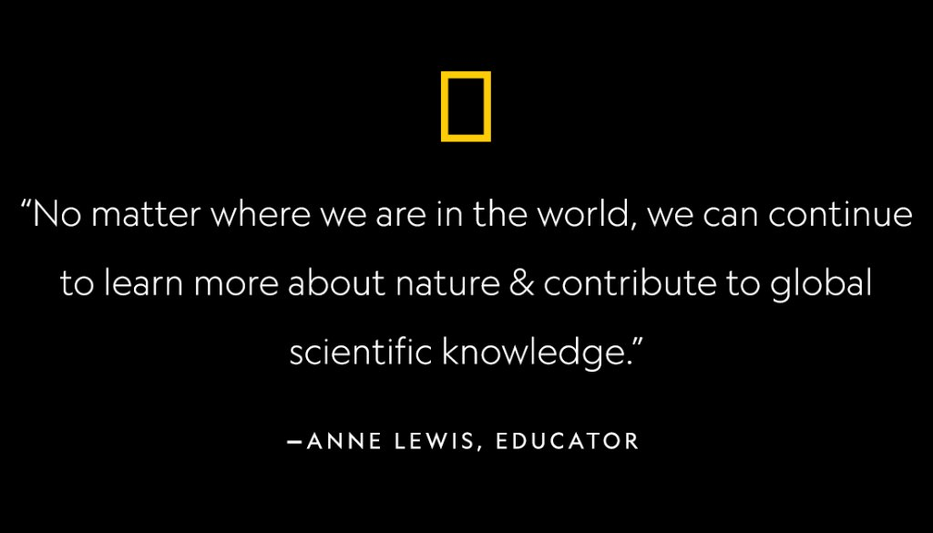 What have you noticed or wondered from your backyard or windowsill? 🌱 #TeacherStrong #CitizenScience